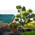 Lakehouse View
